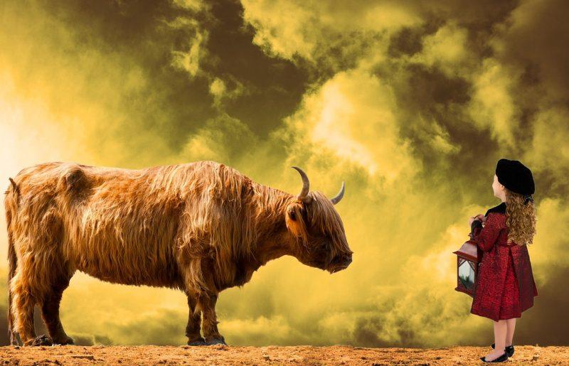 מסחר במניות קטנות – קורס סווינג פרטי 1X1