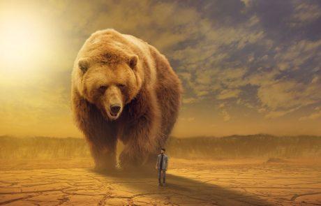 מניות בבורסה – אסטרטגיות מסחר מתקדמות